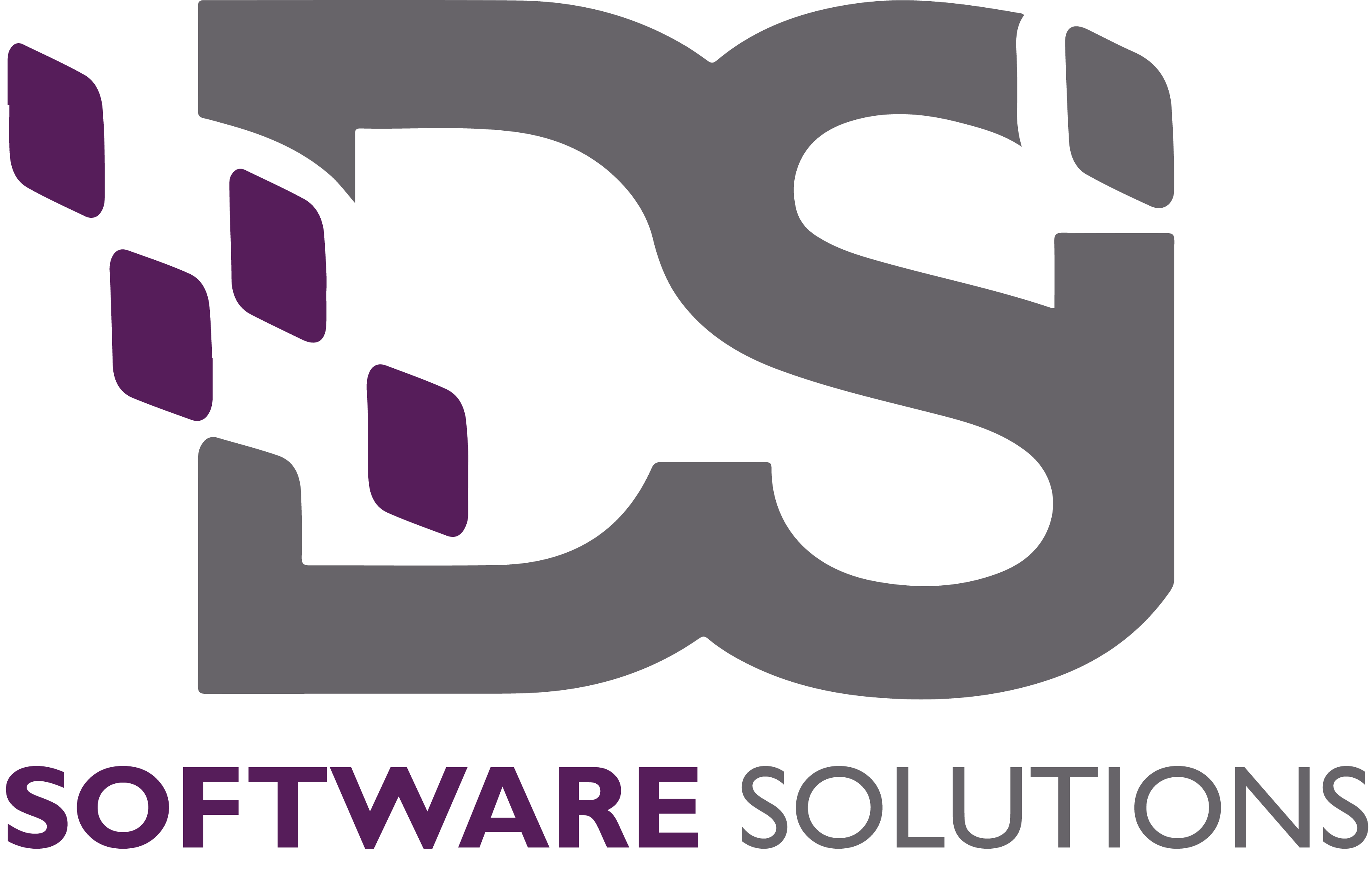 Document Solutions Inc. Software Solutions Logo in gray and purple