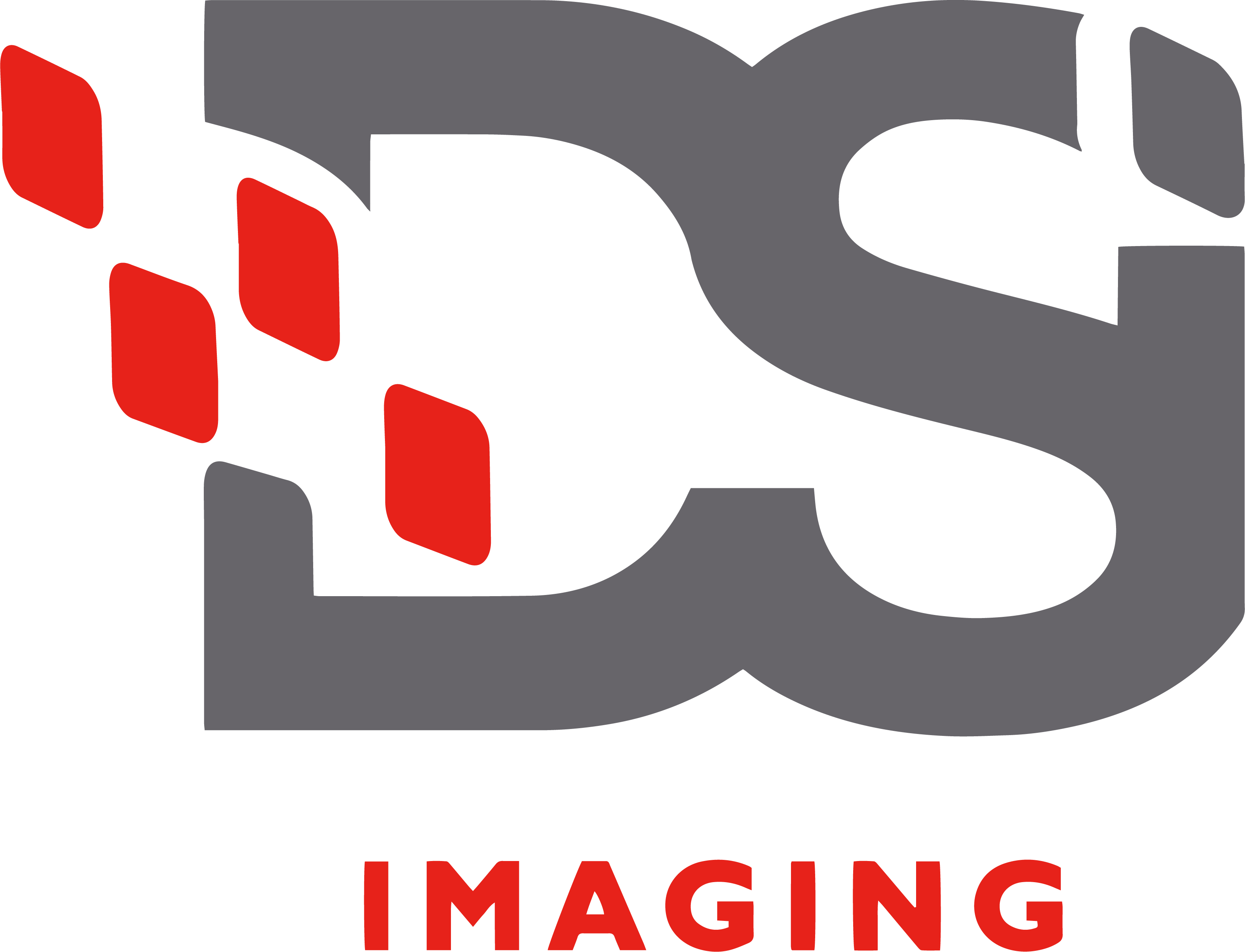 Document Solutions Inc. imaging Logo in gray and red